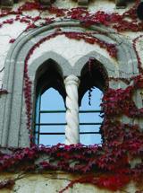 Autumn colors at the Villa Cimbrone Gardens in Ravello160px