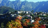 View of Ravello from Scala with Autumn Colors204px