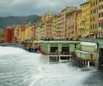 Camogli Coast, Genoa