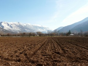 Early winter snow and the garlic field recently ploughed