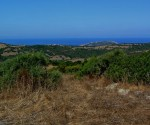 Charming Farmhouse with 7500m2 of land in Aglientu