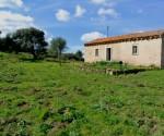 Farmhouse in Arzachena