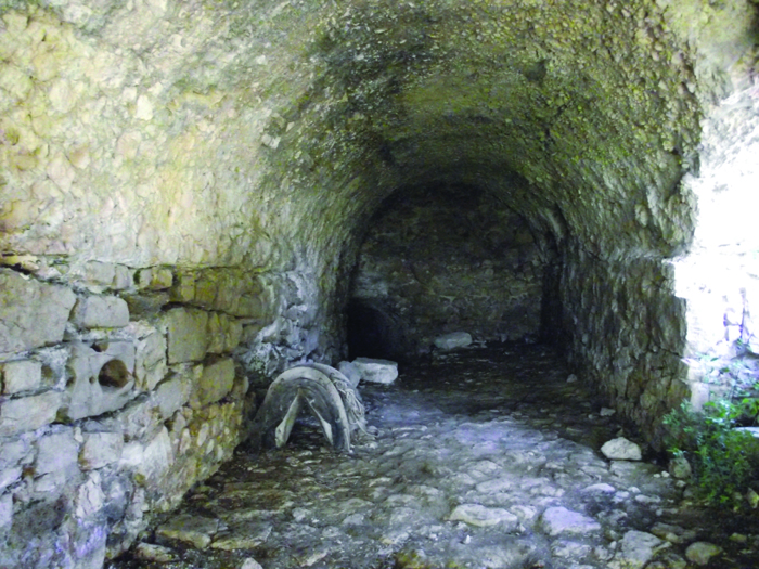 *083 roman cellars discovered beneath le mole sul farfa