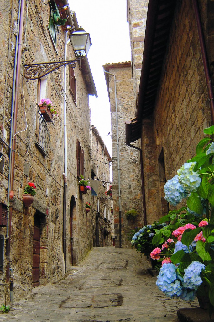 Bolsena street, by Tom Berger