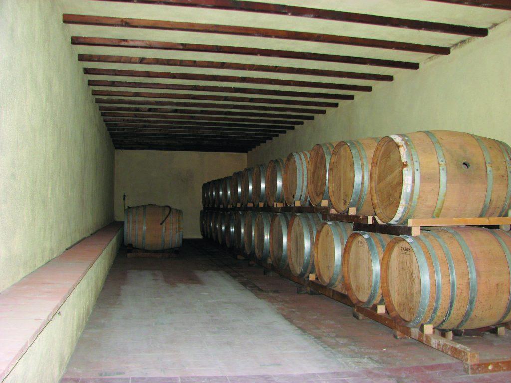 Wine cellar_Le Sughere