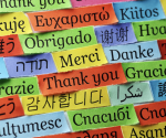 Top 3 Language Apps