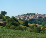 Homes in: Le Marche