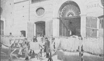 antique picture Italy: Naples, Pasta Factory