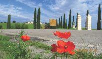 Bevagna and Cannara wine estate in Umbria