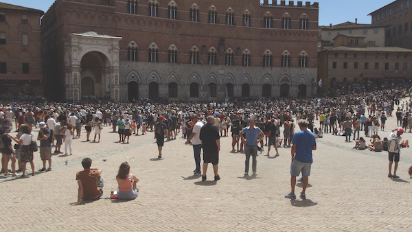 Choosing horses for Siena Palio Italy