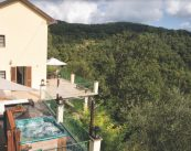Il Cedro Italy