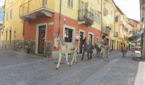Susa, Piedmont