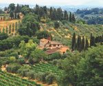 Homes in Tuscany