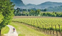 Franciacorta vineyards Italy