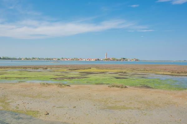 Marshlands of the lagoon from San Francesco del Deserto