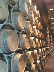 Sassicaia barrels tenuta san guido, Maremma, Tuscany
