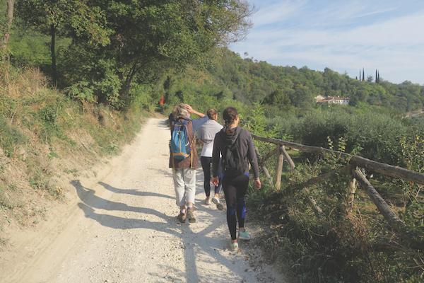 Monte Fasolo trail