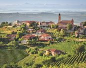 Langhe Piedmont