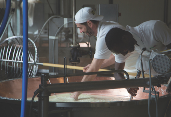 making parmesan