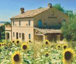 Casa Colpire, Le Marche